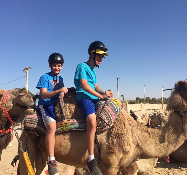 bikes, hikes and camels
