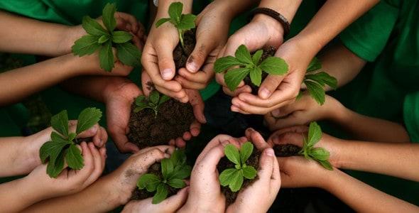 gardening-hands